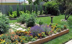 GARDENING TIPS – Your Garden in September